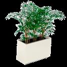 Jardineras con forma rectangular